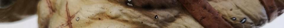 NARIN´s King & Queen, Detailshot of the Predator